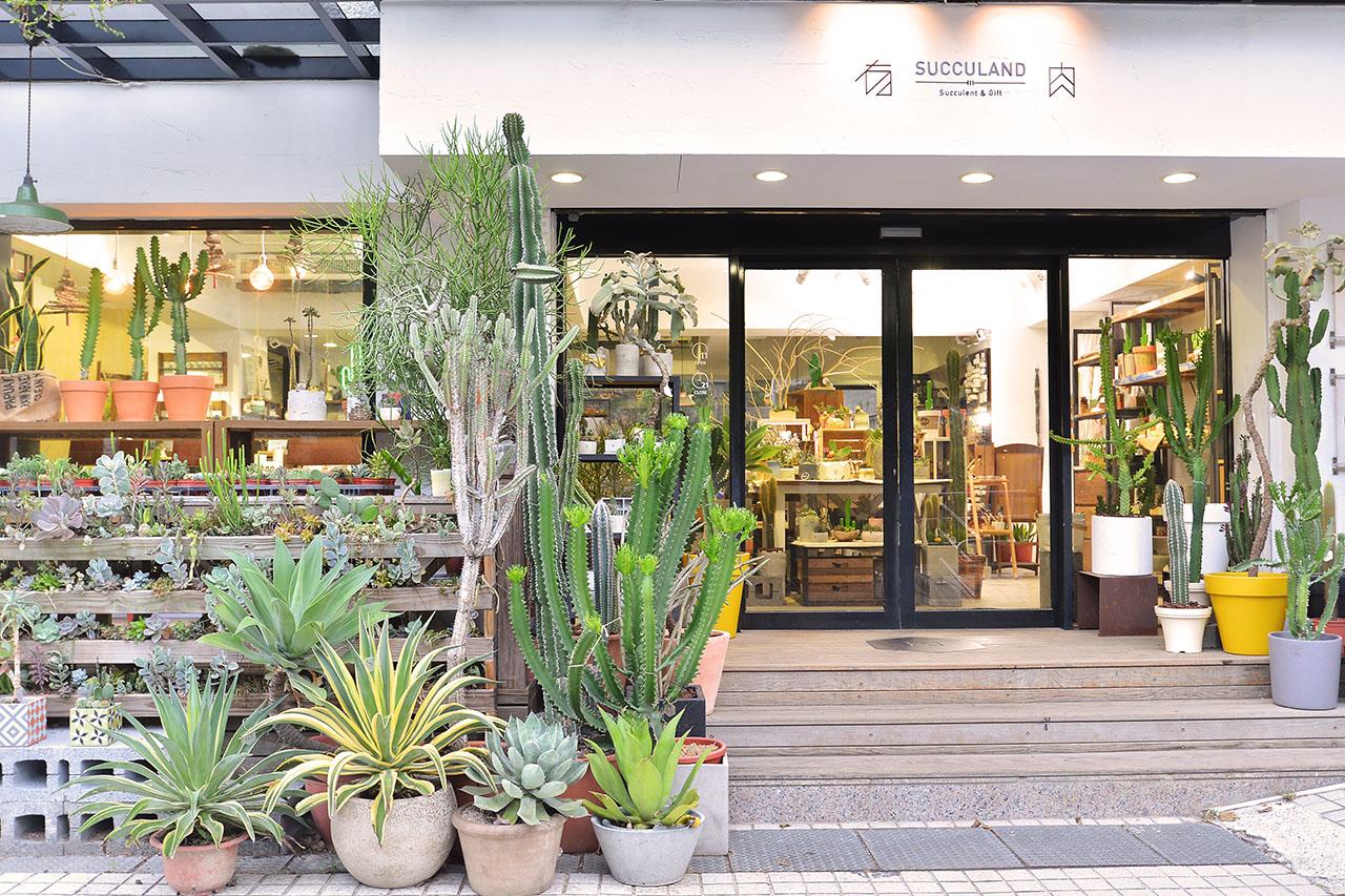 台灣植物店風潮!6 間質感植物店特搜 2