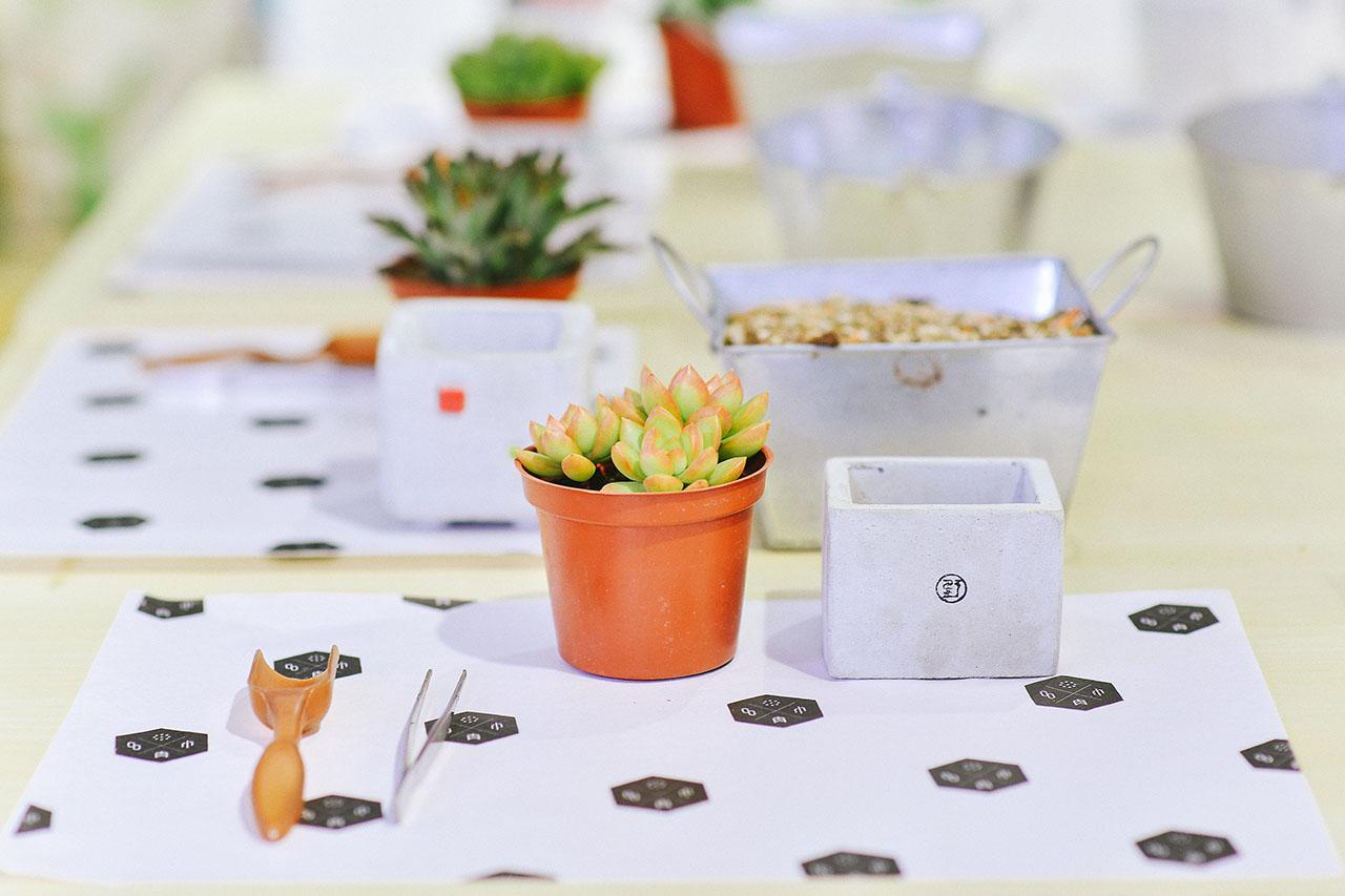 有肉 Succulent & Gift - 官方網站 1