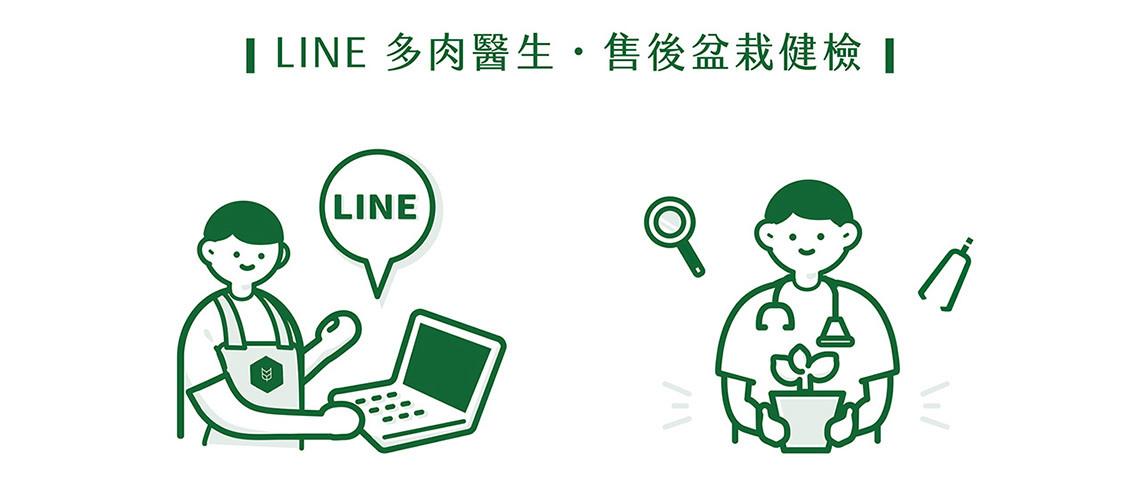 多肉植物圖鑑-景天科 succulent doc