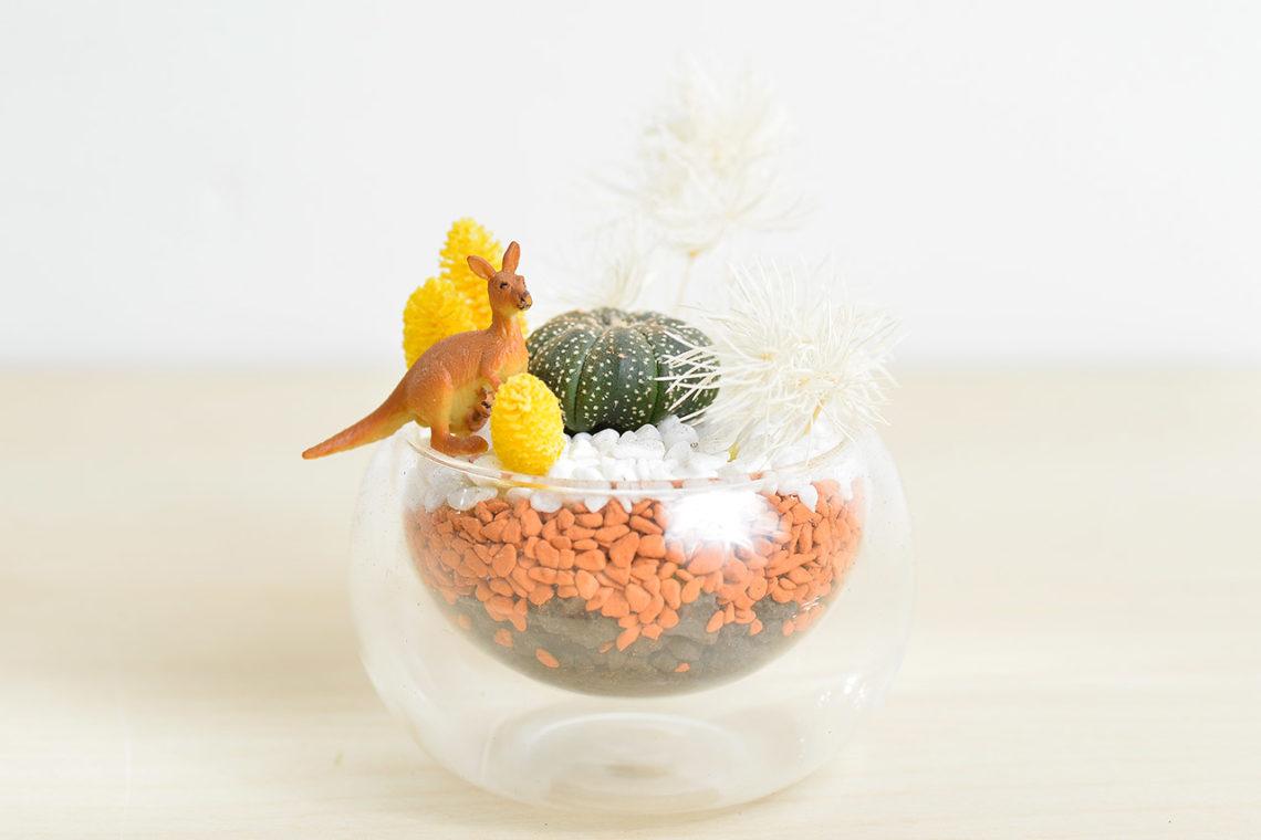 有肉 Succulent & Gift - 官方網站 14