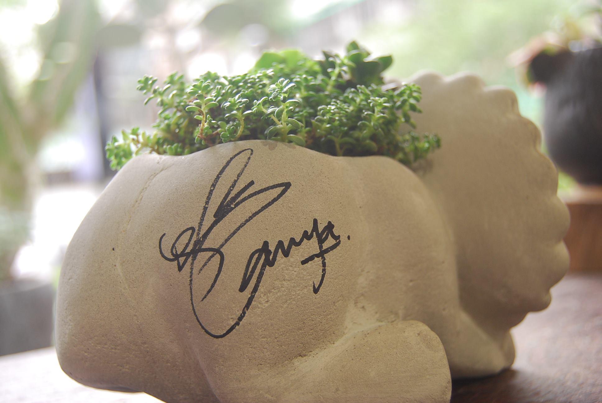 水泥造型恐龍盆栽與簽名