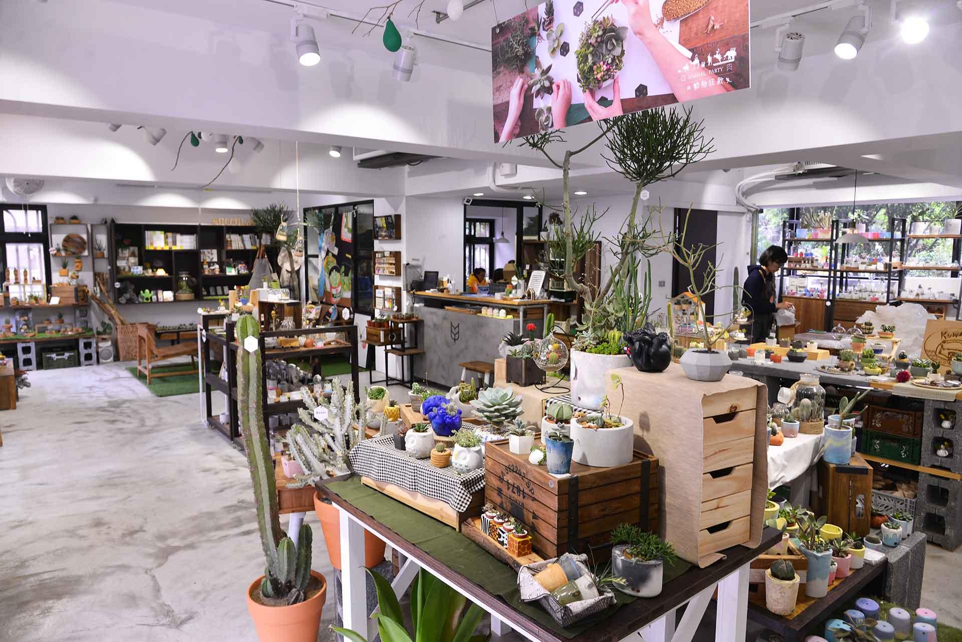 台北多肉植物專賣店
