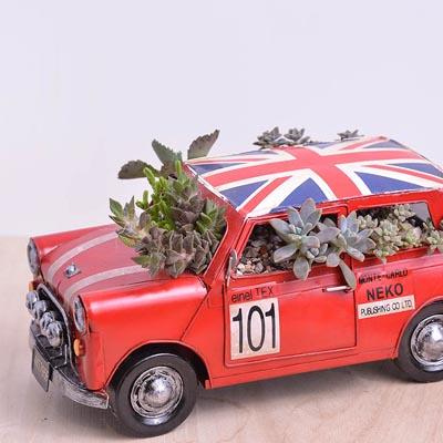 車子造型盆栽生日禮物