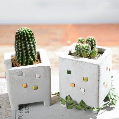 小房子磁磚 S(雙盆組) 1
