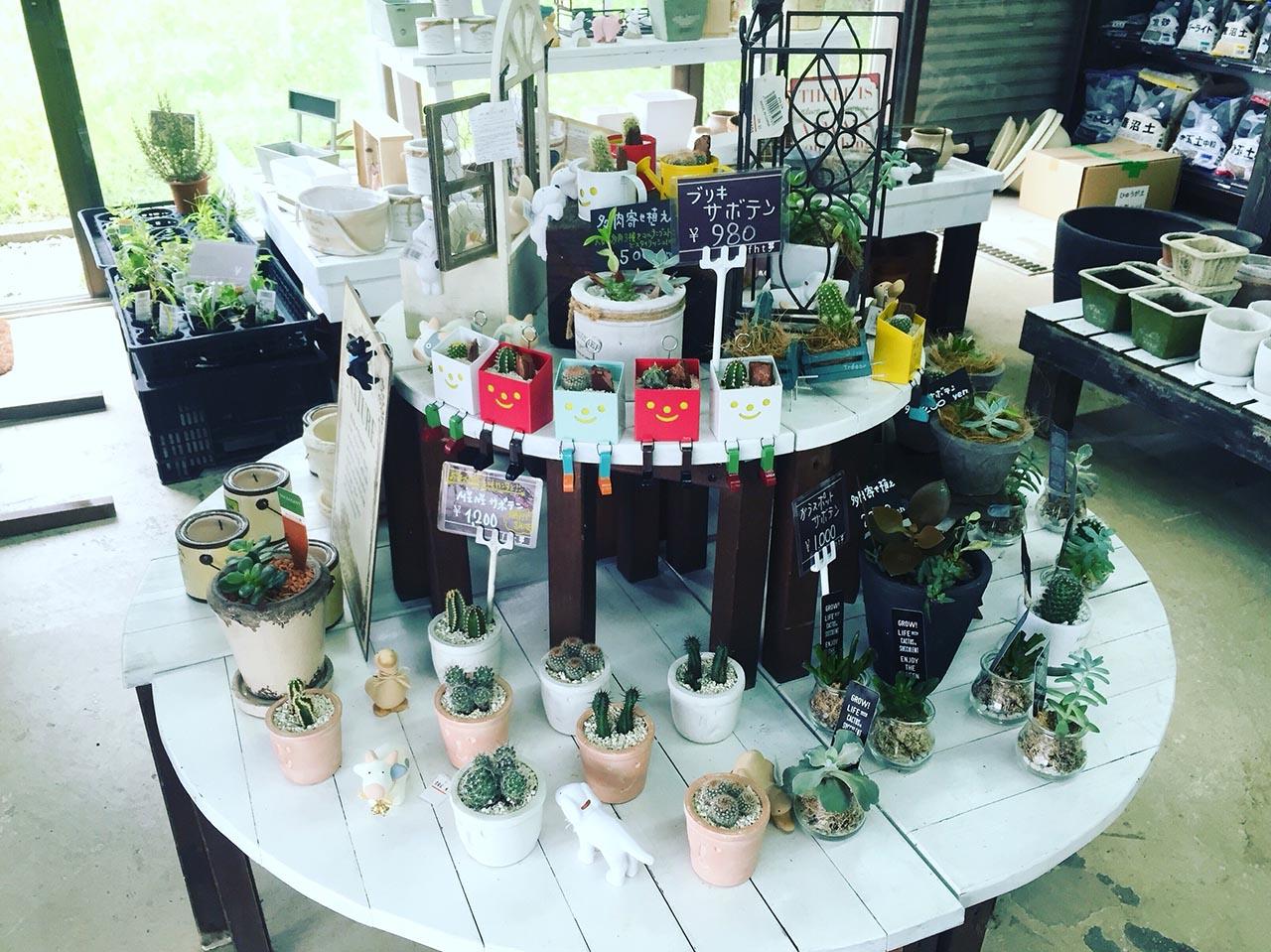 鮮花競放館的盆栽販賣區
