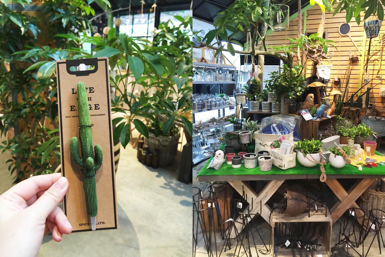 日本多肉植物周邊