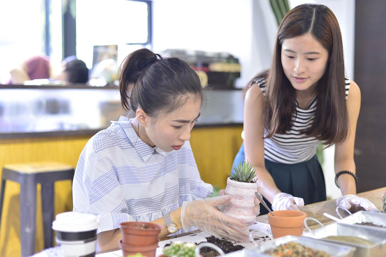 手作課程與多肉植物