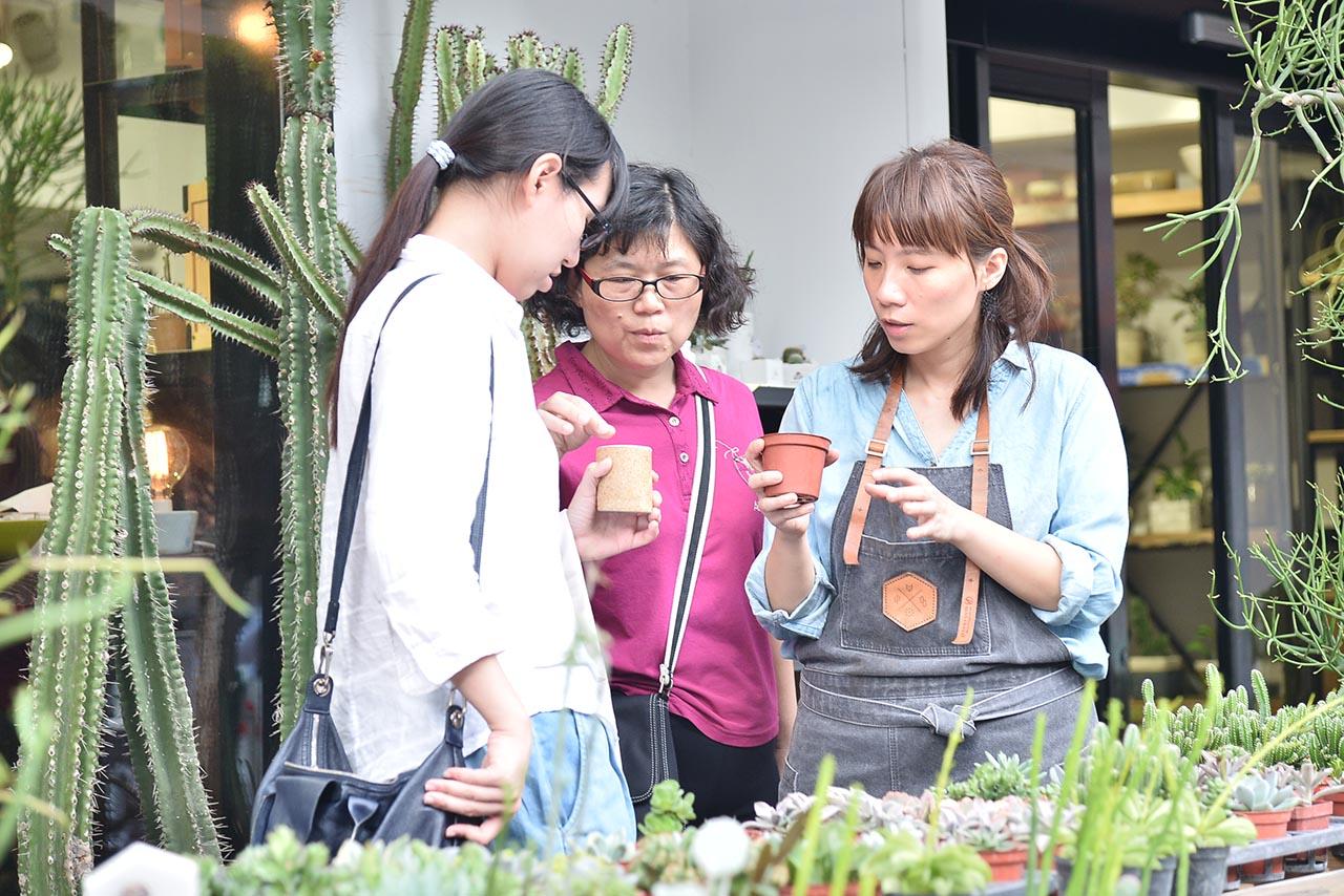 多肉植物 網路花店