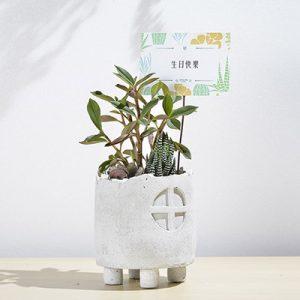 小屋子 - 手捏圓花盆 14