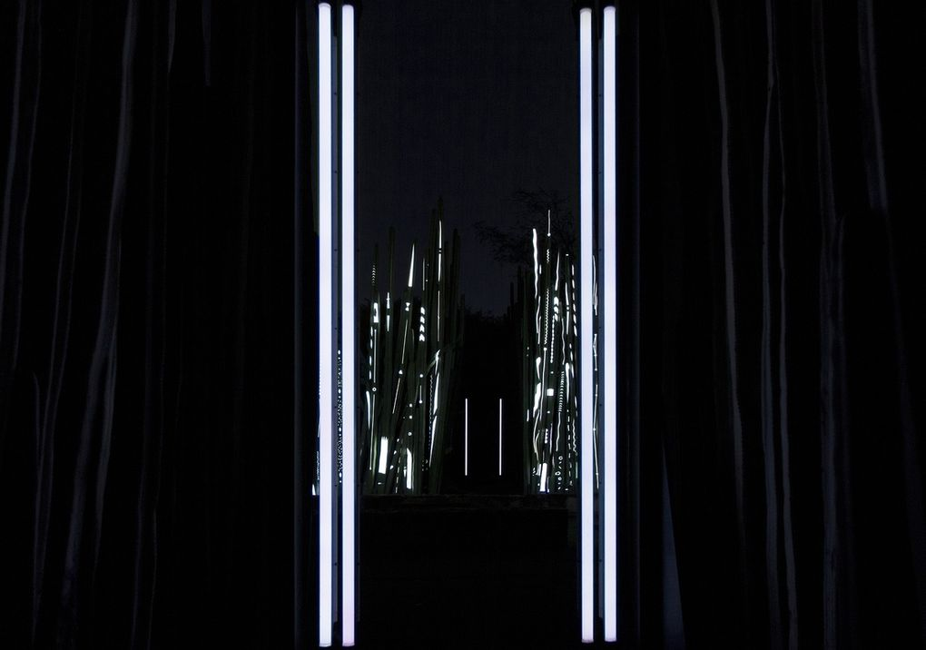 The_Ark-highres-4.1391561608