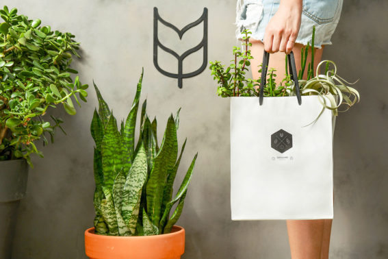 禮物包裝提袋