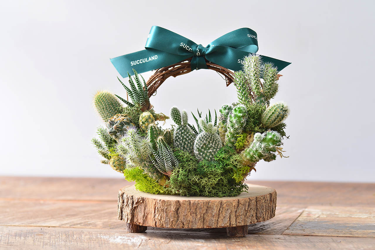 仙人掌花圈 cactus wreath 課程