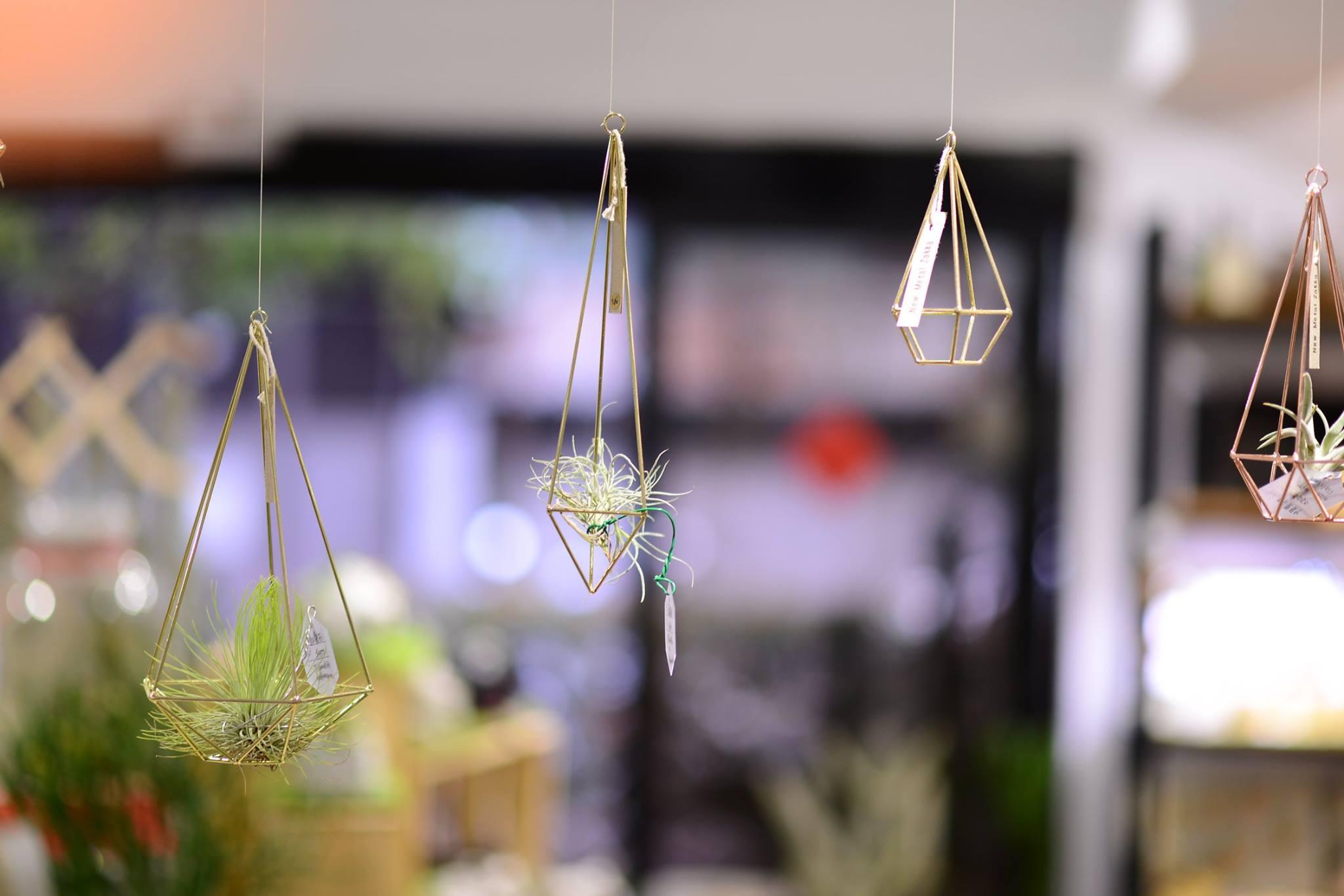 空氣鳳梨掛飾-香檳金/三角形 (三種尺寸) 10