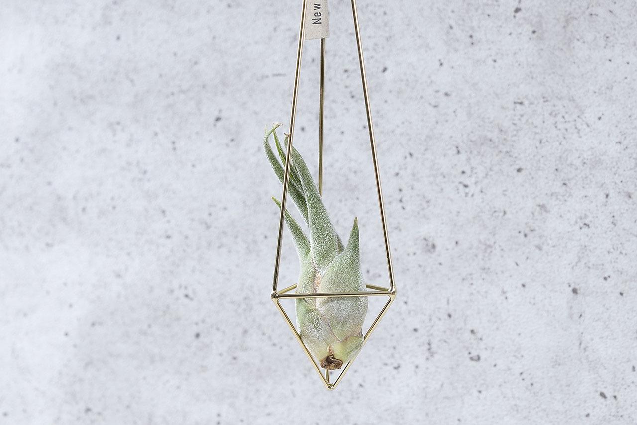 空氣鳳梨掛飾-香檳金/三角形 (三種尺寸) 2商品0902 1761