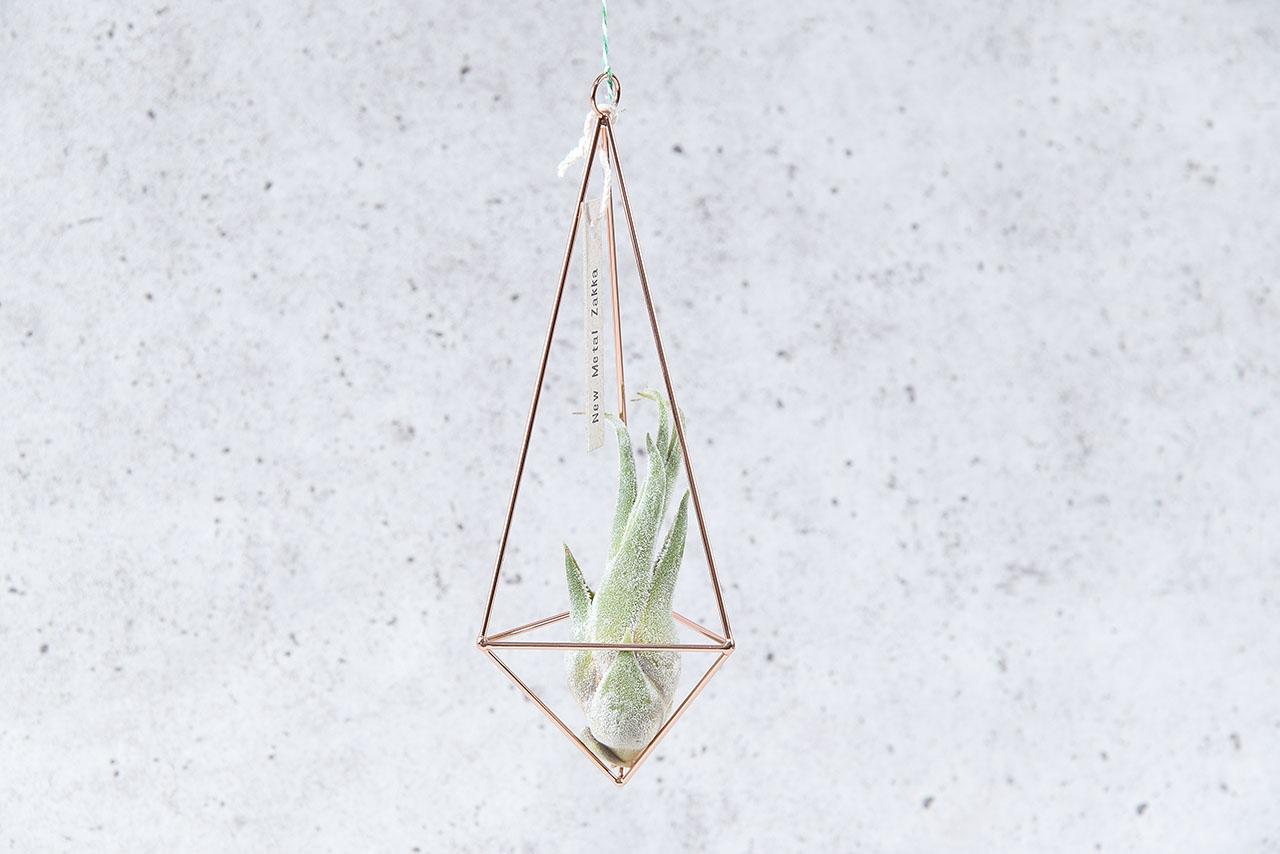 空氣鳳梨掛飾-玫瑰金/三角形 (三種尺寸) 3