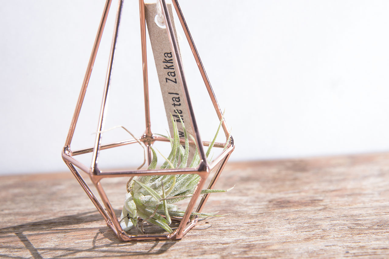 空氣鳳梨掛飾-玫瑰金/鑽石型 (三種尺寸) 3