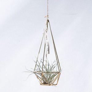 空氣鳳梨掛飾-香檳金/鑽石型 (三種尺寸) 11