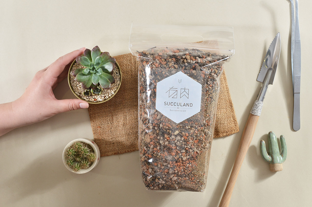 多肉植物專用土介紹,使用超過三種不同的介質混合而成,可以輕鬆的種好多肉植物,讓你簡單地成為多肉植物綠手指