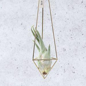 空氣鳳梨掛飾-香檳金/三角形 (三種尺寸) 4002商品0902 1761 1
