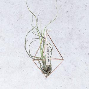 空氣鳳梨掛飾-玫瑰金/三角形 (三種尺寸) 8