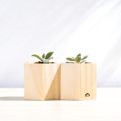 多肉蜂巢木盒盆 (高、中、低款) 1