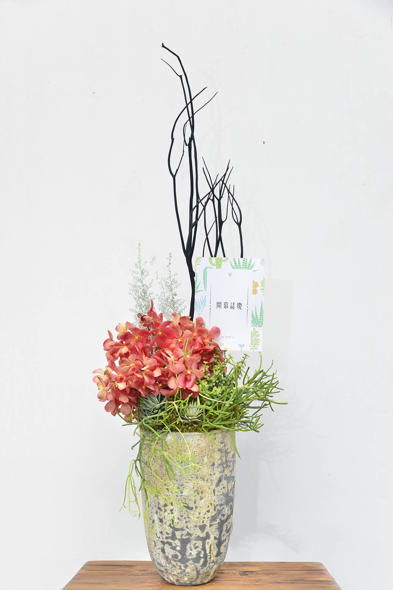 大型花藝盆栽