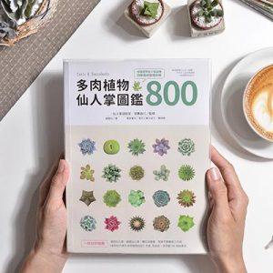 多肉植物・仙人掌圖鑑 800 2