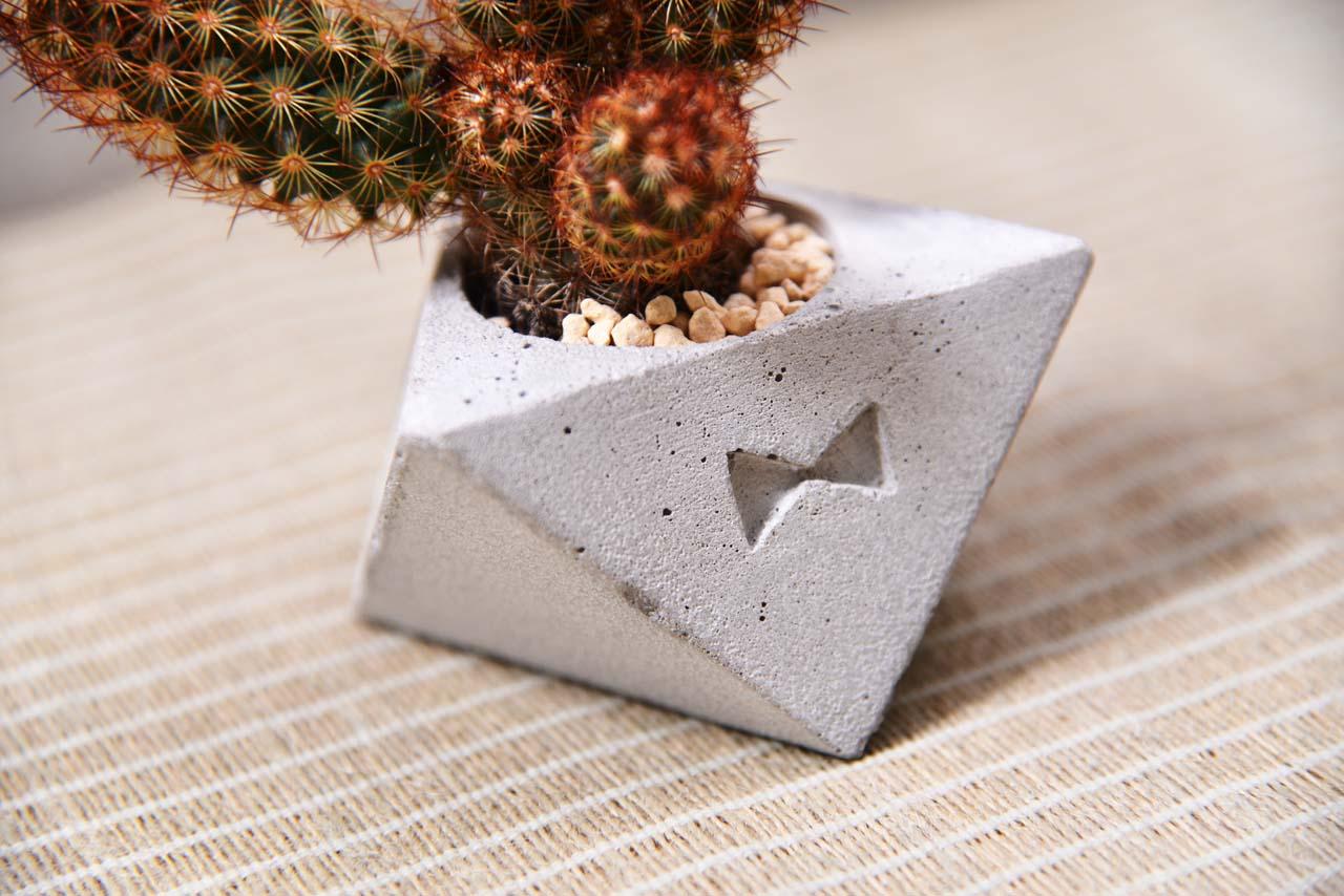 byhy是台灣的手作盆器設計師,水泥是這個品牌的主要創作材質,搭配鮮豔的仙人掌相得益彰