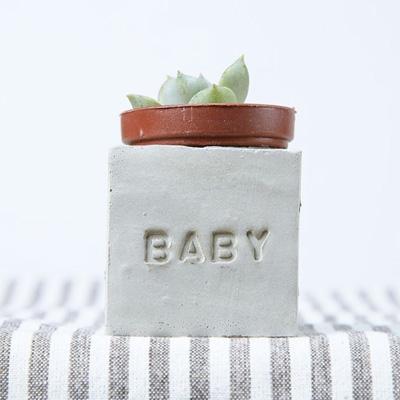 多肉小磁鐵-BABY baby
