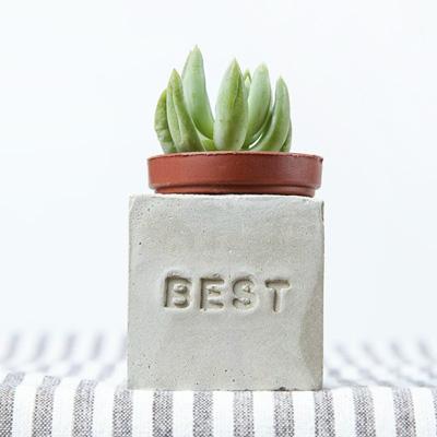 多肉小磁鐵-BEST best
