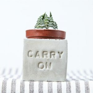 多肉小磁鐵-CARRY ON carry