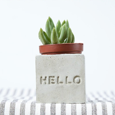 多肉小磁鐵-HELLO hello