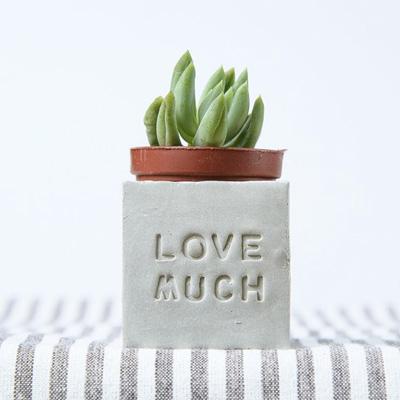 多肉小磁鐵-LOVE MUCH lovemuch