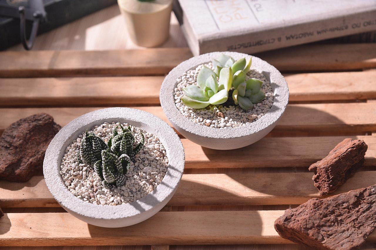 大半圓形狀的多肉植物花器,水泥材質搭配不倒翁的特性,讓盆栽多了一些趣味