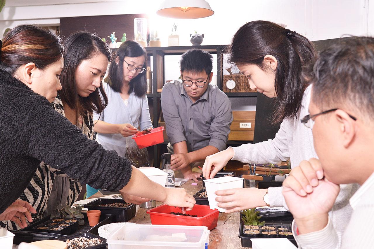 多肉植物養護課程