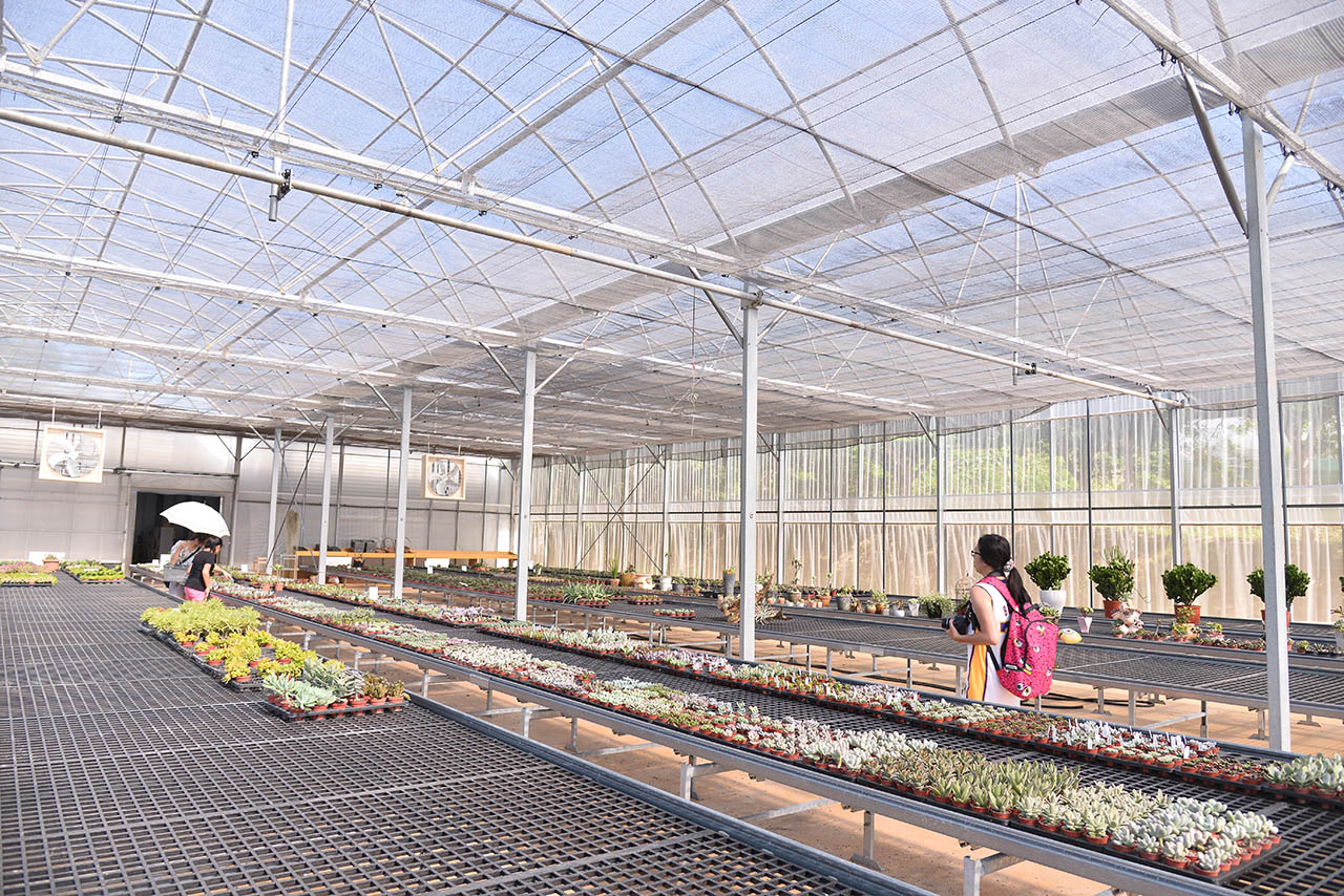 新竹新埔的仙人掌園區,福祥仙人掌佔地五公頃,提供數千種的多肉植物、仙人掌供人選購