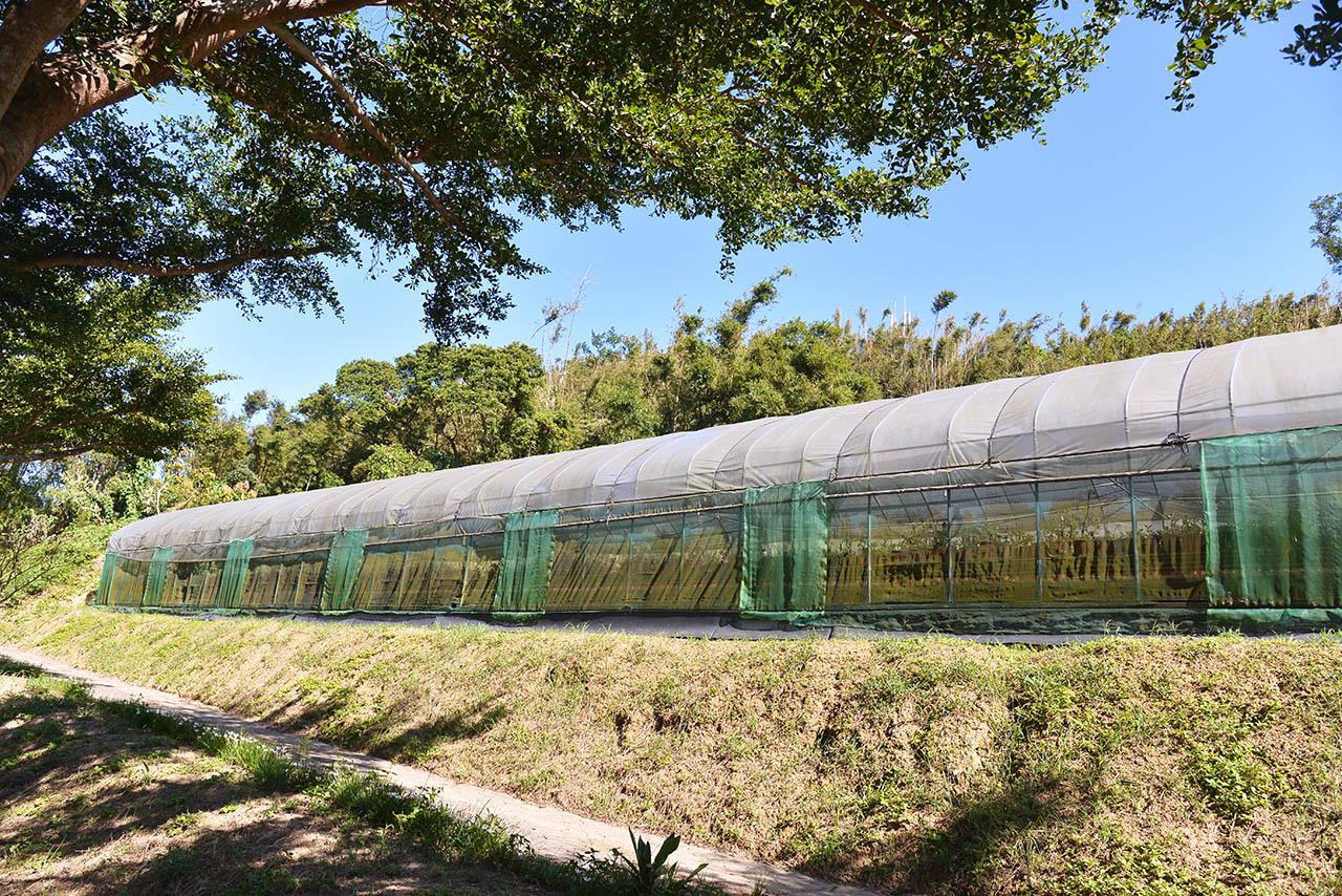 仙人掌園溫室圖