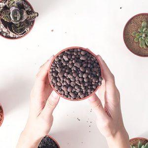 多肉植物專用介質-發泡煉石 400