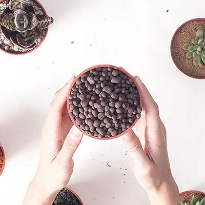 多肉植物專用介質-發泡煉石 1