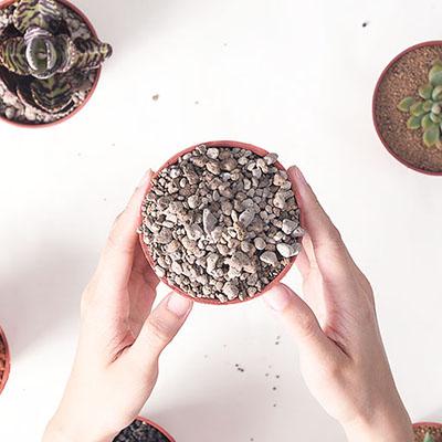 多肉植物專用介質-白火山石 400