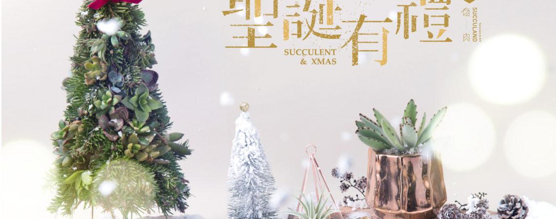主題活動 | 聖誕有禮 Succulent & Xmas 62
