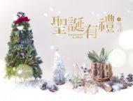 主題活動 | 聖誕有禮 Succulent & Xmas 1205聖誕有禮 1920x1280