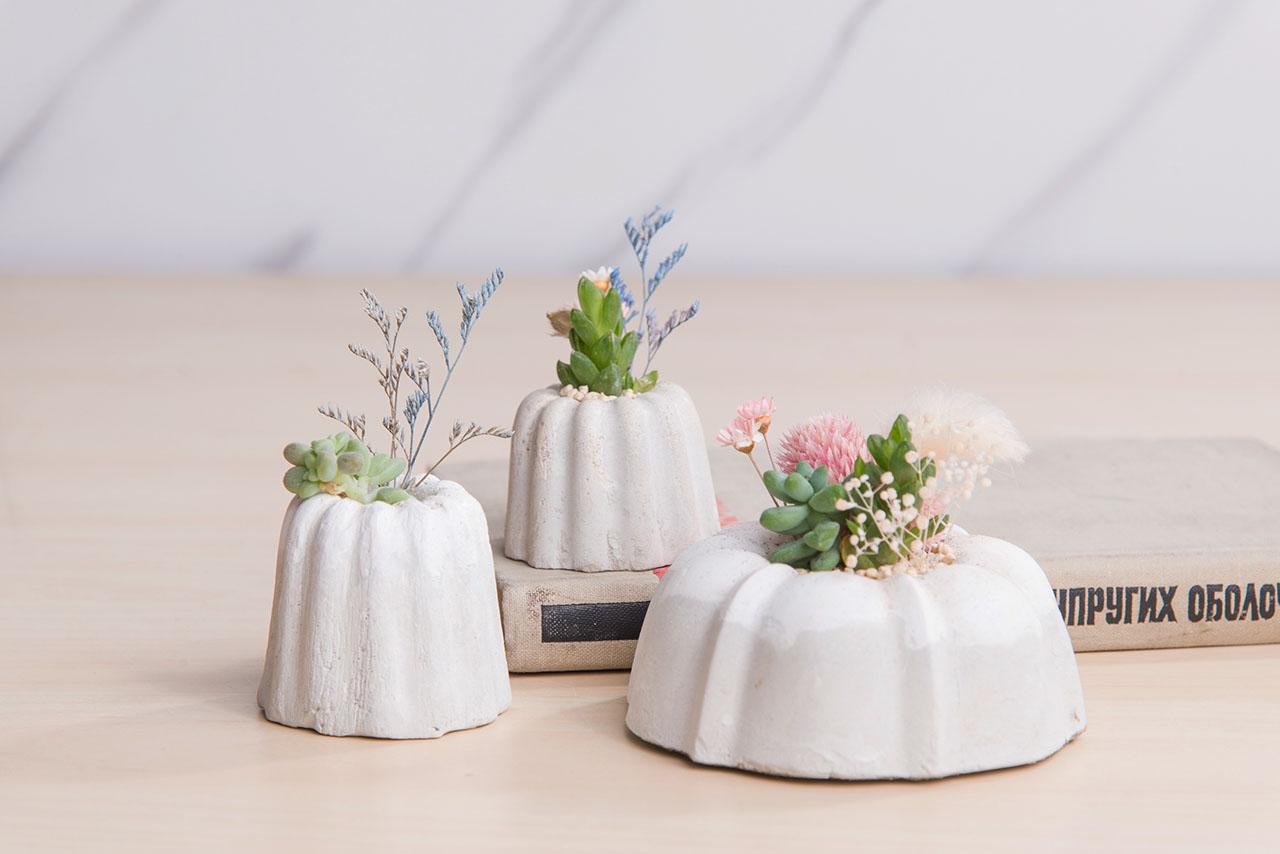 多肉植物水泥盆栽,可麗露形狀的甜點花盆,結合乾燥花與多肉植物創造全新感受