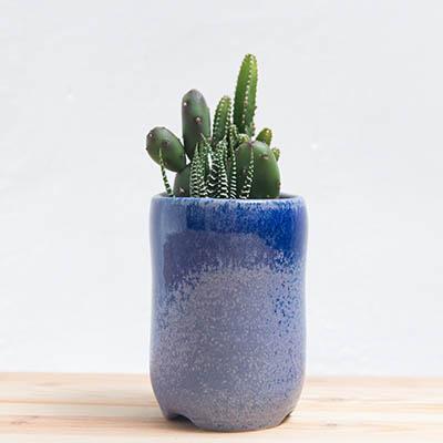 青花素盆-海洋藍 400 8 1