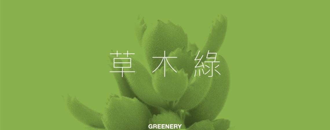 2017 最 Greenery 的多肉植物! pantone greenery