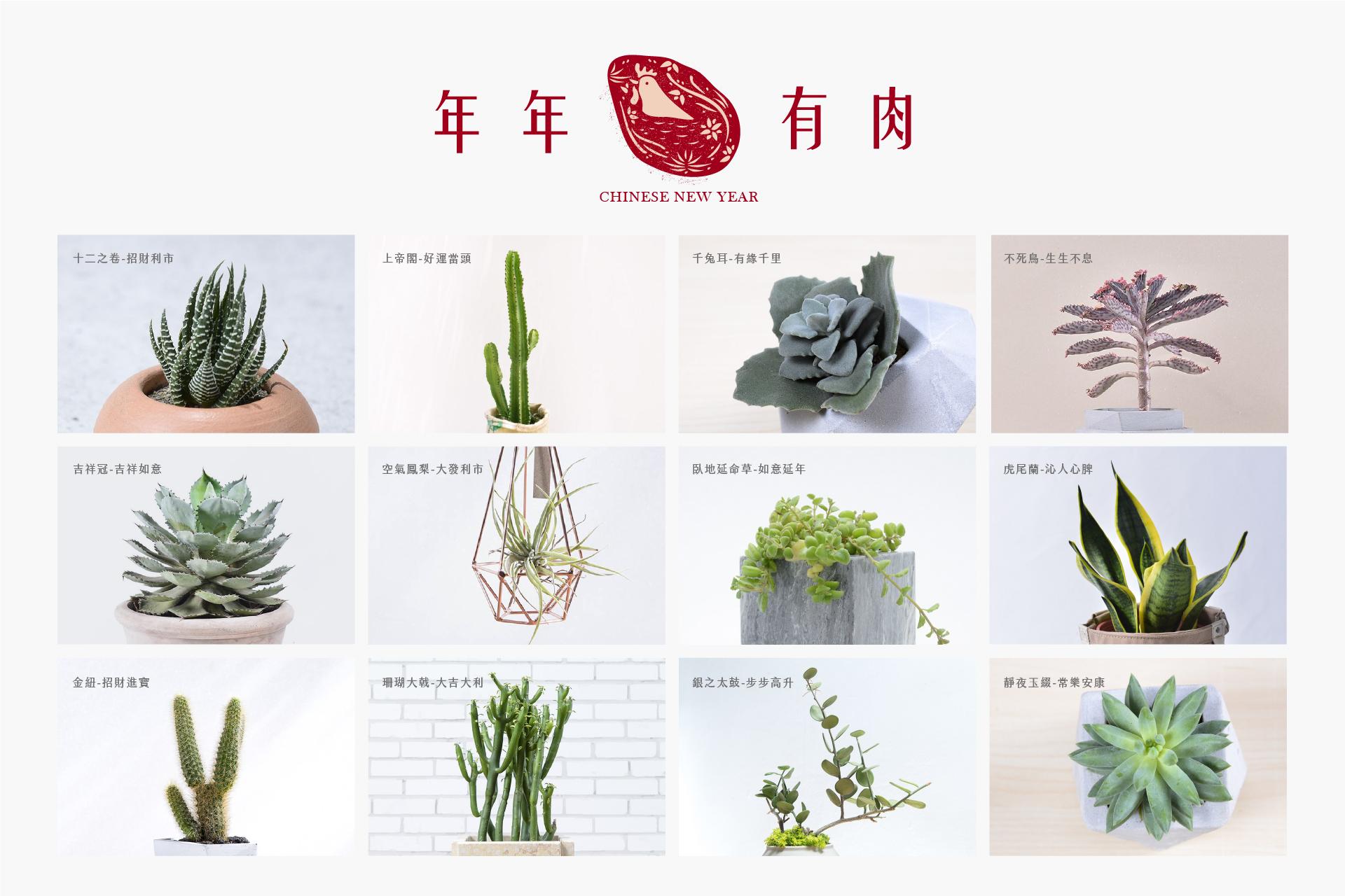 新春開運好肉『有肉三吉 - 吉 姬 戟』 10