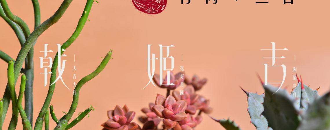 新春開運好肉『有肉三吉 - 吉 姬 戟』 6