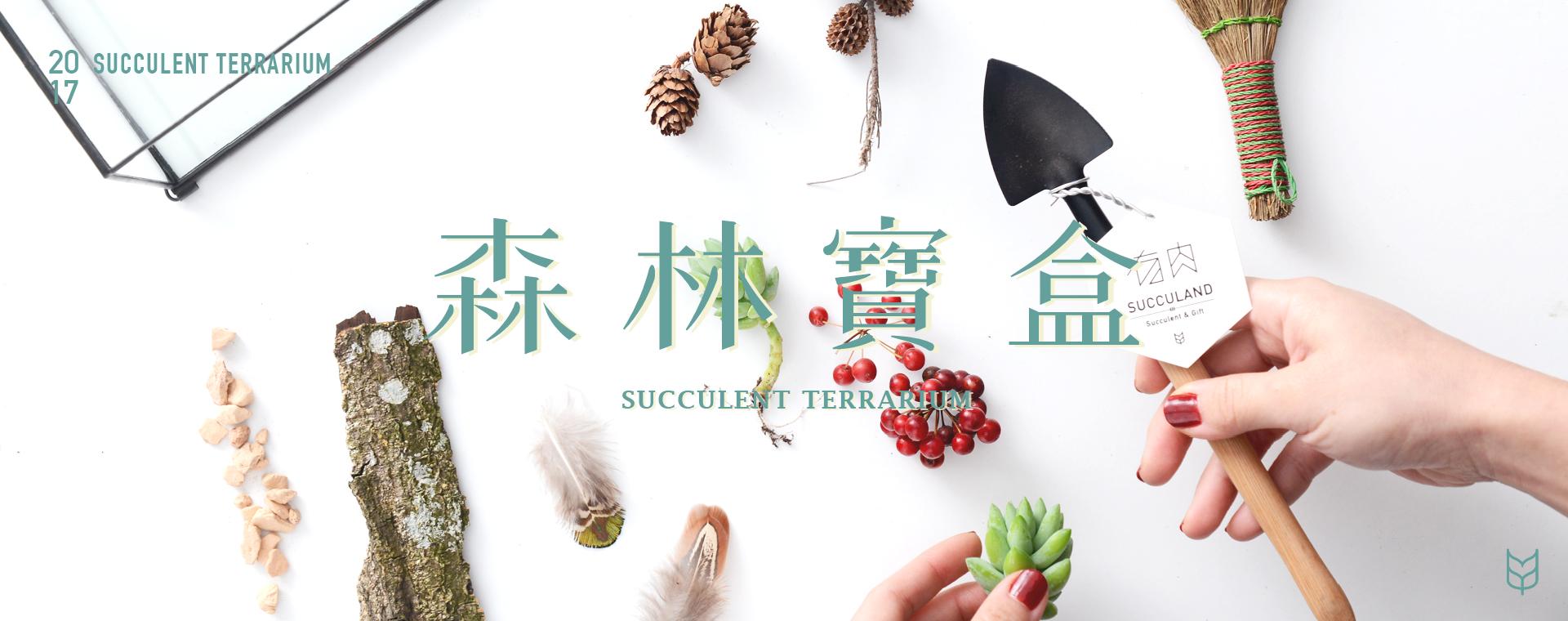森林寶盒課程封面照,透過教學學習將花藝材料組合再一起吧!