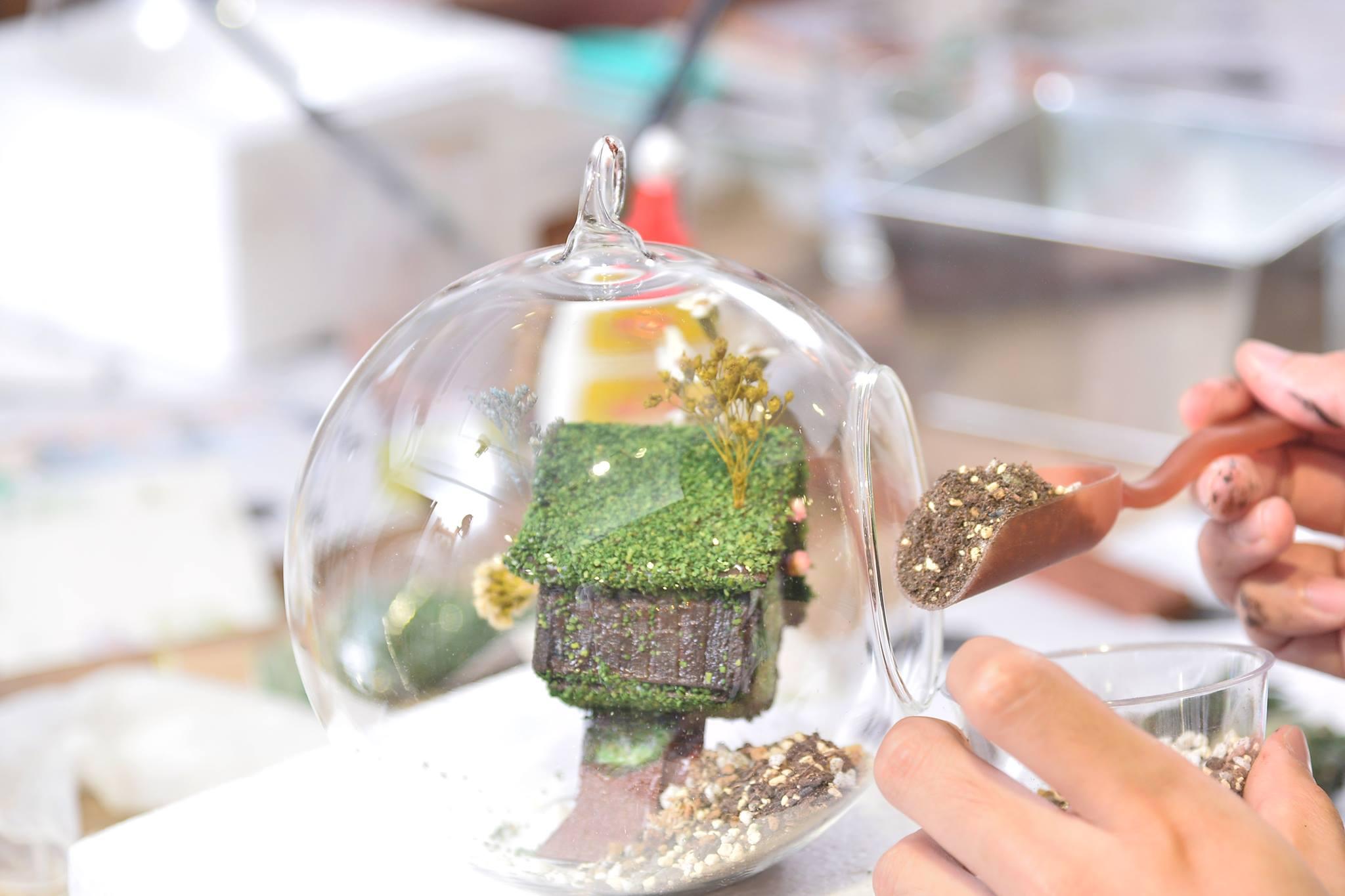 想像正在創造一個多肉植物小行星,裡頭的擺設都由自己一手包辦,自己從無到有創造出來