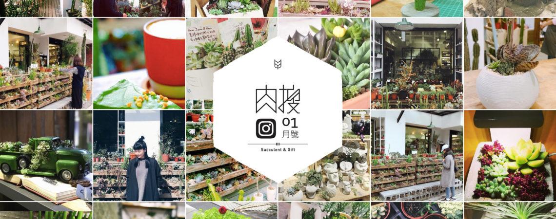 Instagram 肉搜計畫:1 月號 banner 20171